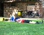 snoozing in a park, Tuscania Italy